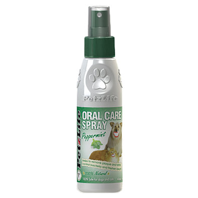 Oral Care Spray - 4 oz