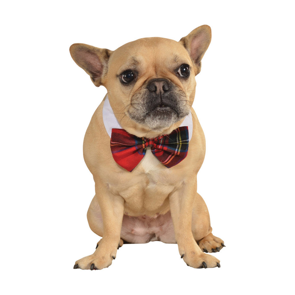 View larger image of Plaid Bow Tie - Small/Medium