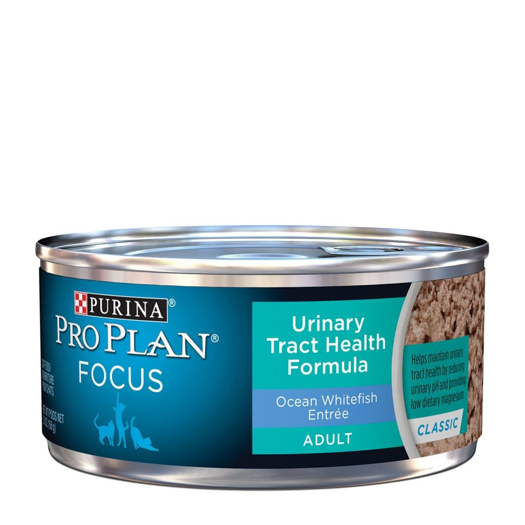 View larger image of Focus Urinary Tract Health Formula Adult Wet Cat Food, Classic Ocean Whitefish Entree 156