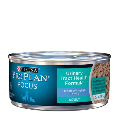 Focus Urinary Tract Health Formula Adult Wet Cat Food, Classic Ocean Whitefish Entree 156