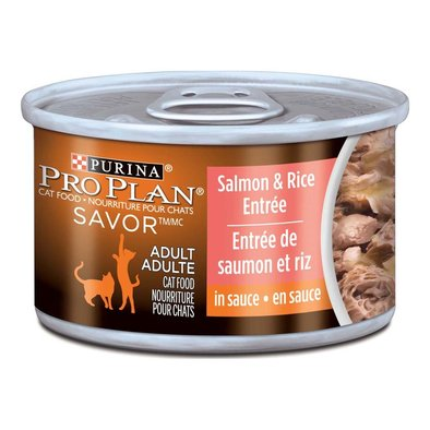 Savor Adult Wet Cat Food, Salmon & Rice Entrée in Sauce 85 g