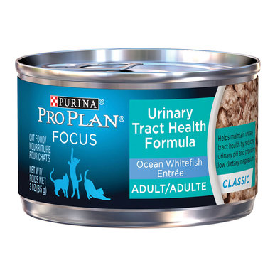 Focus Urinary Tract Health Wet Cat Food, Ocean Whitefish Entree 85 g