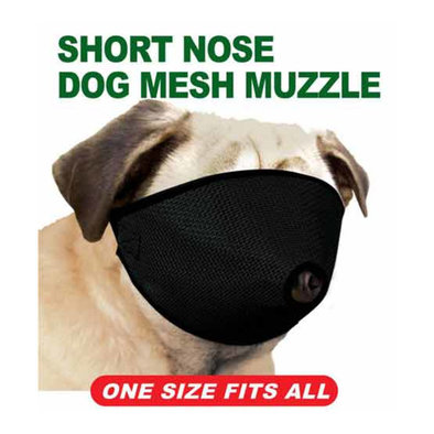 Short Nose Mesh Dog Muzzle