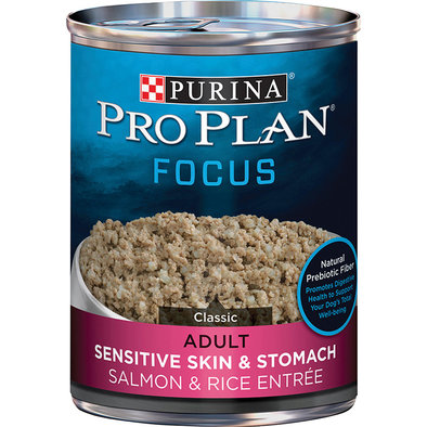 Focus Sensitive Skin & Stomach Adult Wet Dog Food, Salmon & Rice Entree 369 g