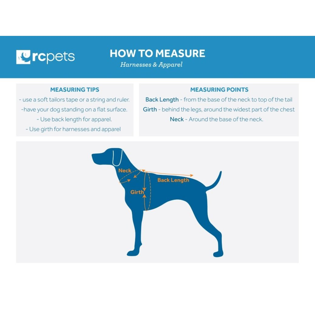 View larger image of Harness - Step in - Raspberry