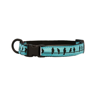"Kitty Clip Collar - Birds On A Wire - 1/2"" Width - 8-10"""
