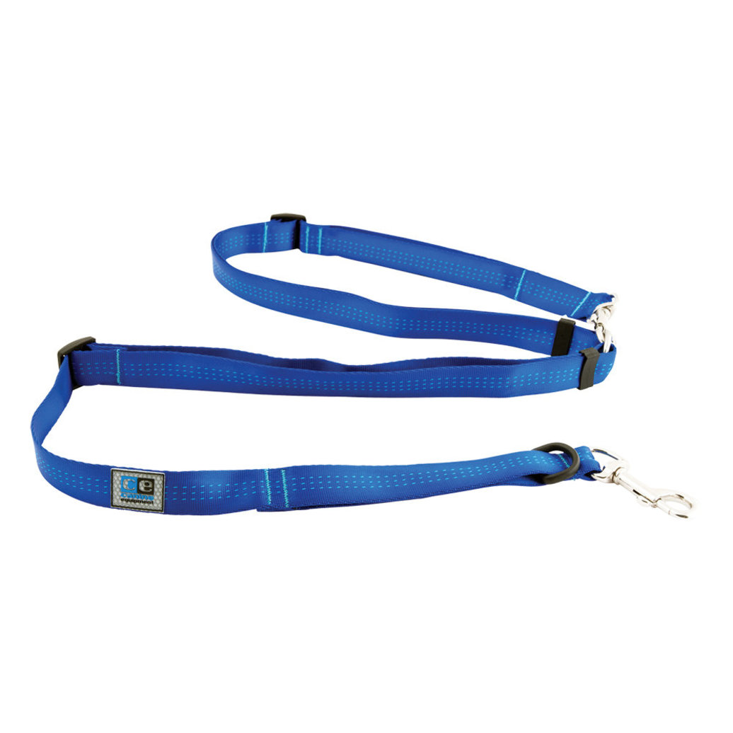 """View larger image of Leash - Beyond Control - Blue - 3/4"""" Width - 6'"""