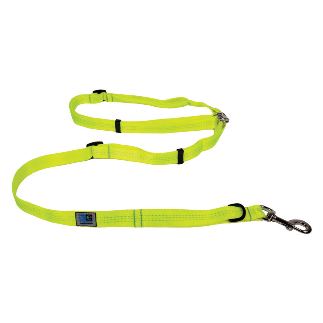 """View larger image of Leash - Beyond Control - Neon Yellow - 3/4"""" Width - 6'"""