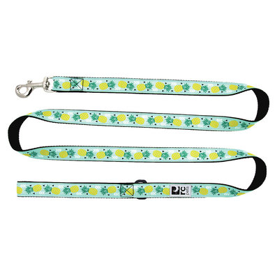 "Leash - Pineapple Parade - 1"" Width - 6'"