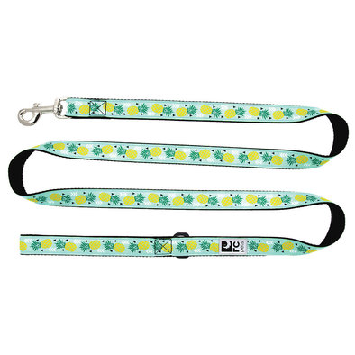 "Leash - Pineapple Parade - 3/4"" Width - 6'"