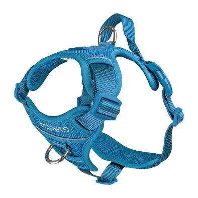 Harness - Momentum - Dark Teal