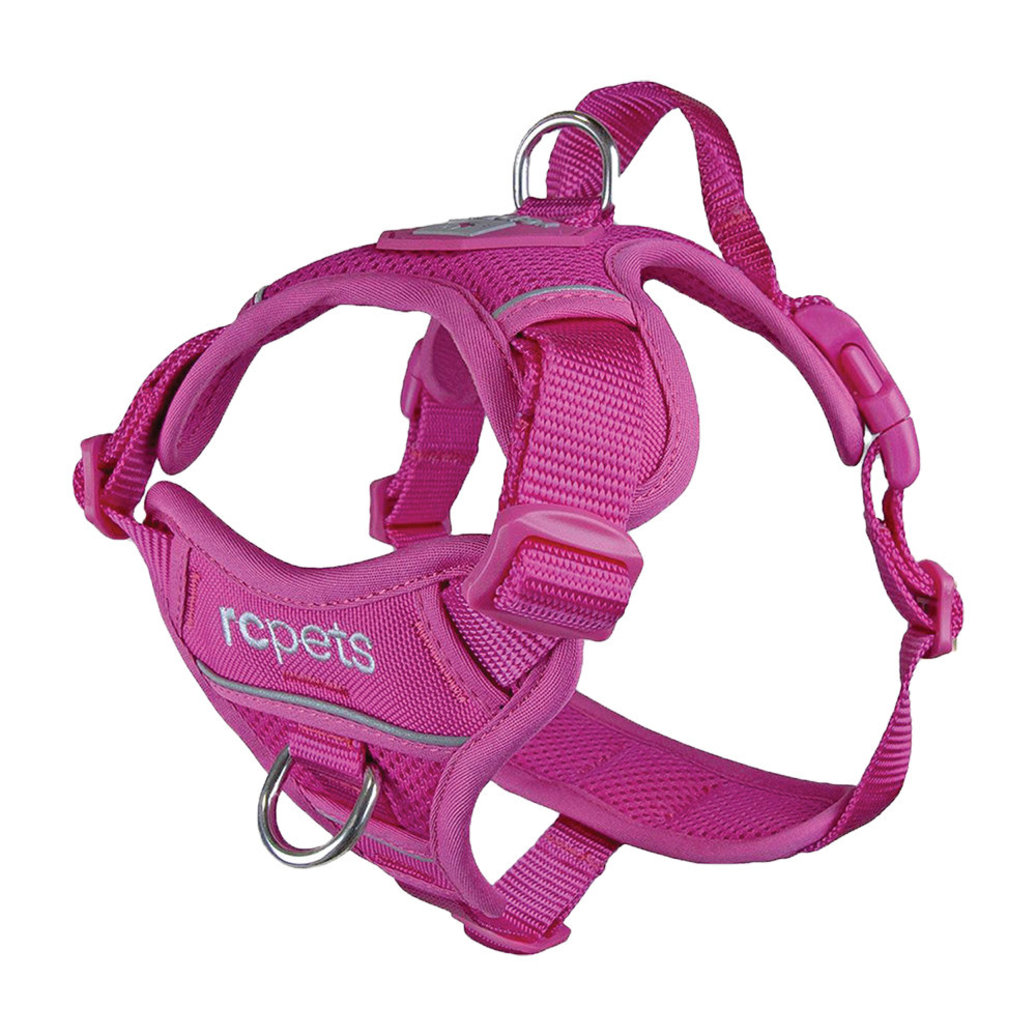 View larger image of Harness - Momentum - Fuchsia