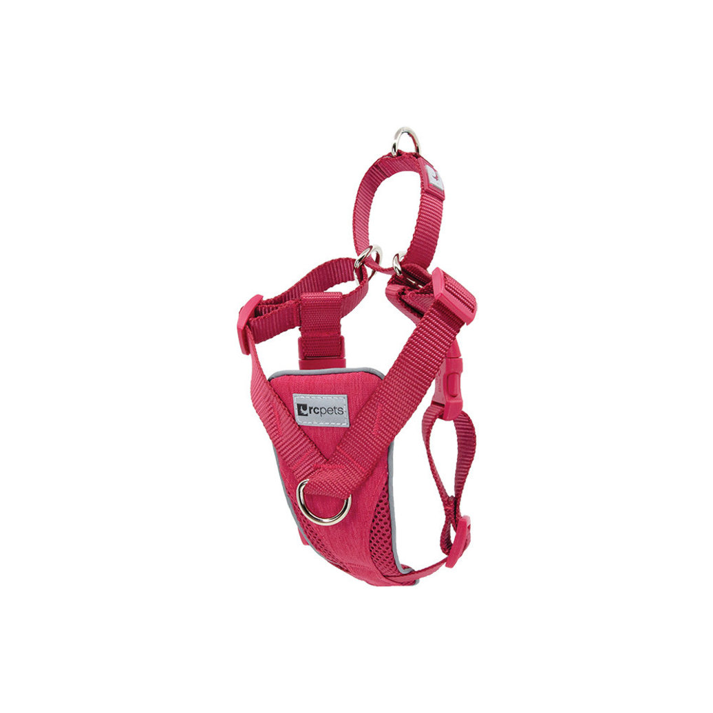 View larger image of Harness - Tempo No Pull - Heather Azalea