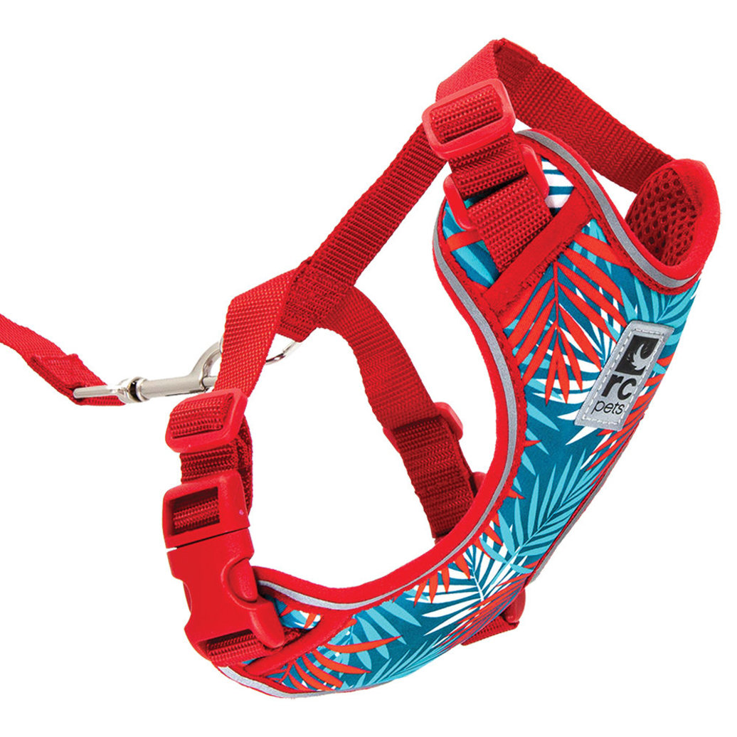 View larger image of Kitty Adventure Harness - Maldives