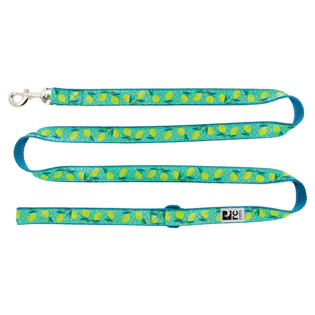 View larger image of Leash - Lemonade - 6'