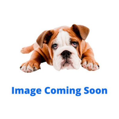 "Primary Clip Collar - Red - 1/2"" Width"