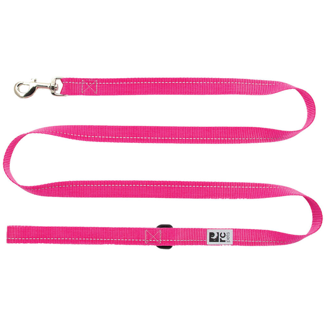 View larger image of Primary Leash - Raspberry