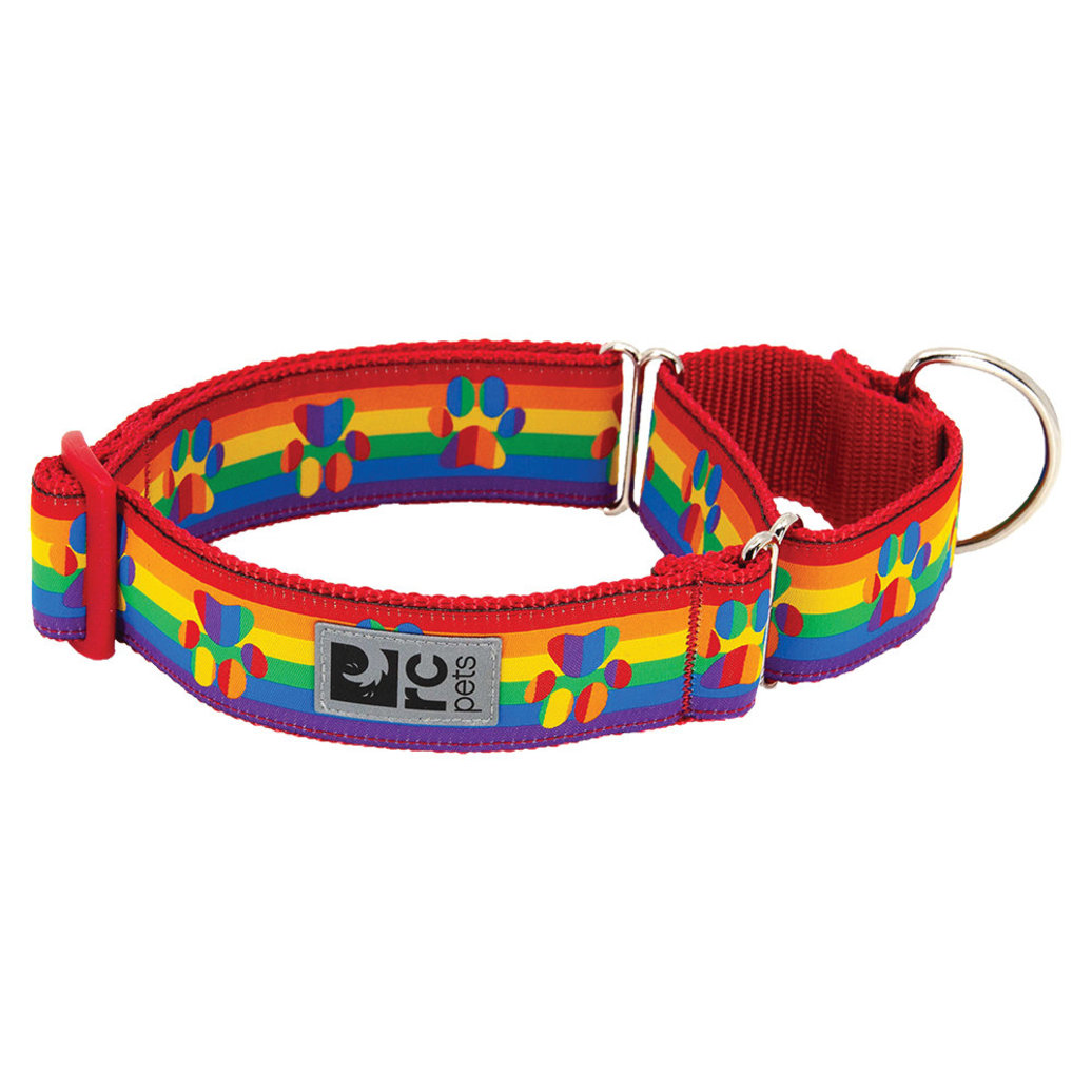 View larger image of Training Collar - All Webbing - Rainbow Paws
