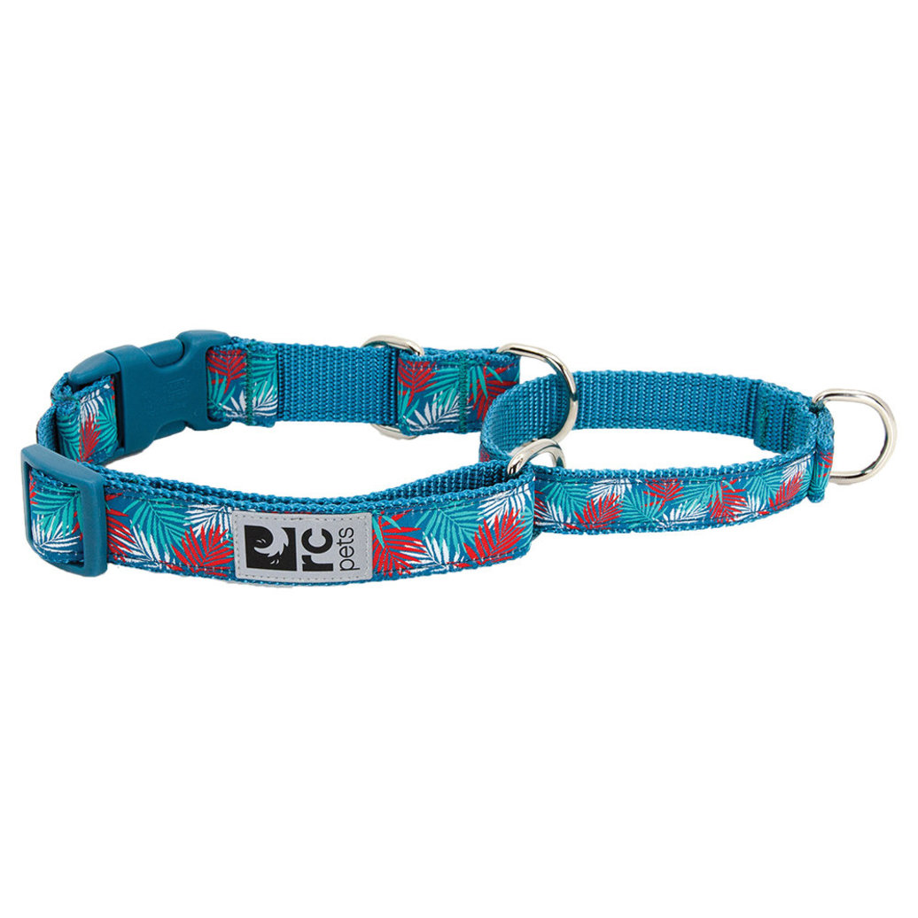 View larger image of Training Collar - Easy Clip - Maldives