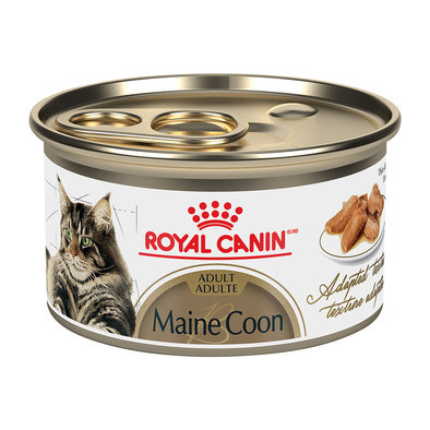 Feline Breed Health Nutrition Maine Coon Loaf in Sauce