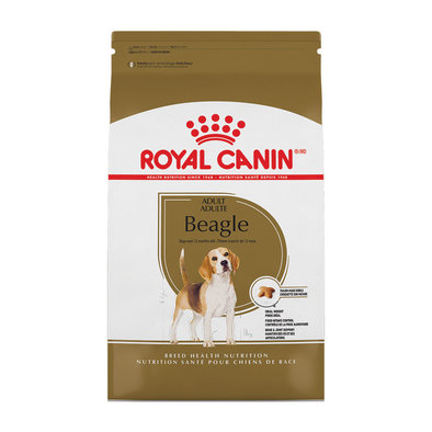 Breed Health Nutrition Beagle Adult