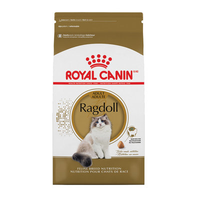 Feline Breed Nutrition Ragdoll