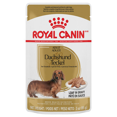 Breed Health Nutrition Dachshund Adult
