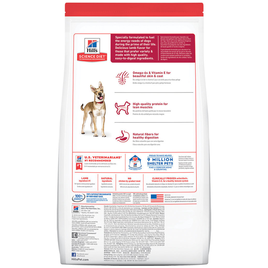 View larger image of Adult Lamb Meal & Brown Rice Recipe Dry Dog Food