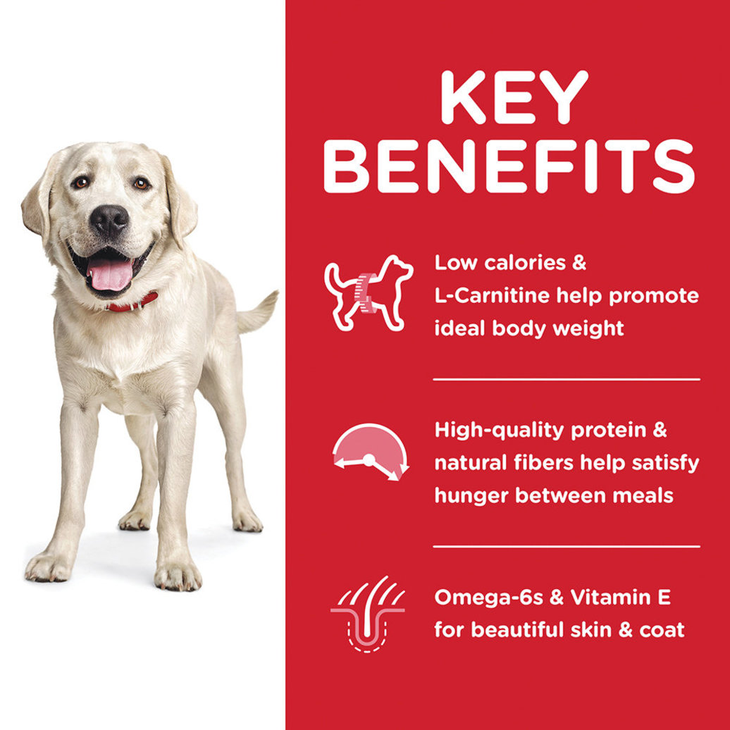 View larger image of Adult Light Large Breed Chicken Meal & Barley Dry Dog Food for healthy weight