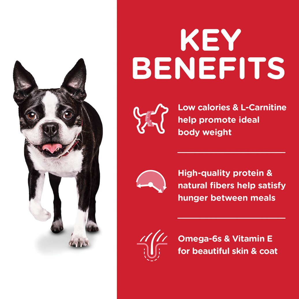 View larger image of Adult Light Small Bites with Chicken Meal & Barley Dry Dog Food for healthy weight management