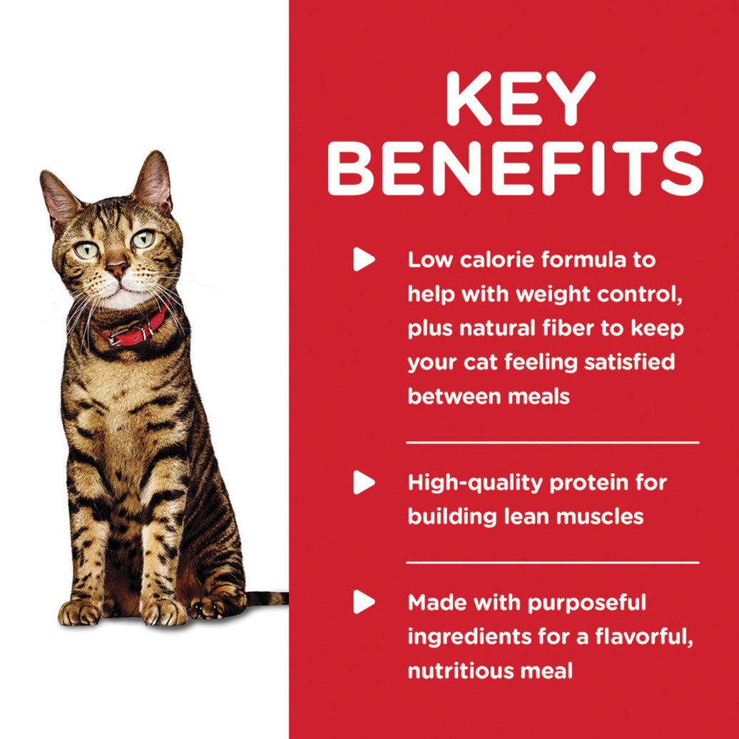 View larger image of Adult Light Liver & Chicken Canned Cat Food for healthy weight management, 156 g