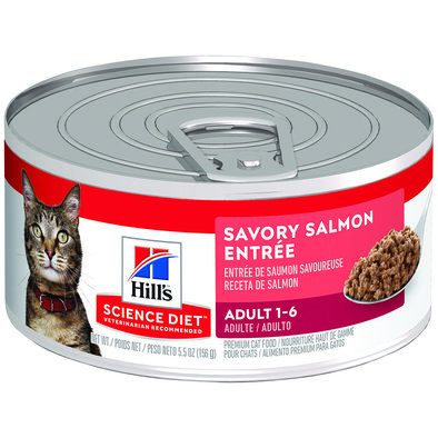 Adult Savory Salmon Canned Cat Food, 156g