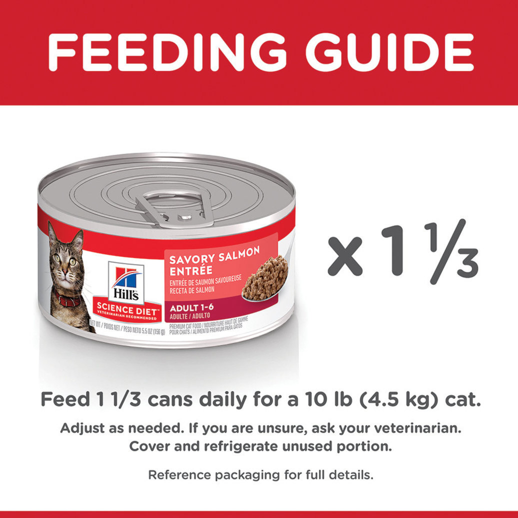 View larger image of Adult Savory Salmon Canned Cat Food, 156g