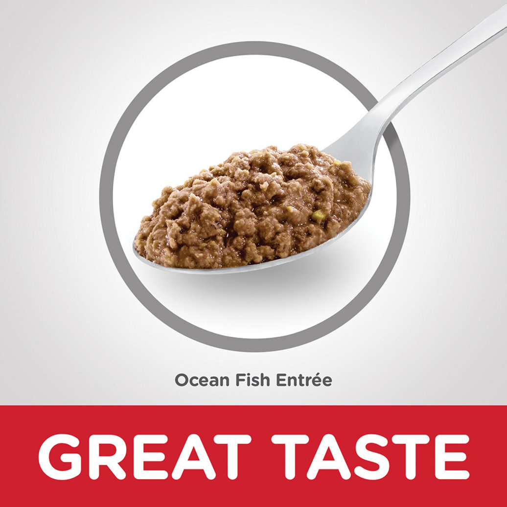 View larger image of Adult Ocean Fish Canned Cat Food, 156 g