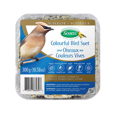 Colourful Bird Blend Suet - 300 g