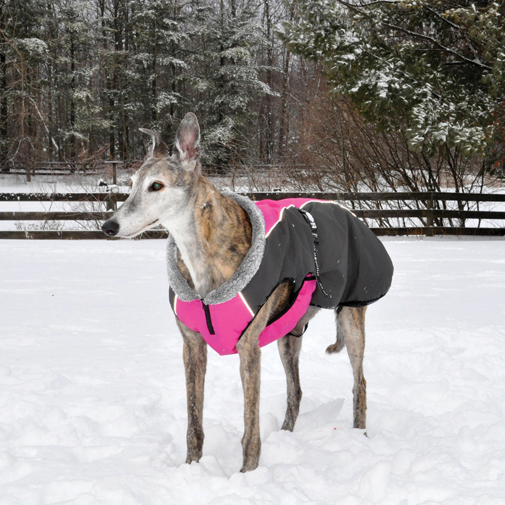 View larger image of Chinook Coat - Hot Pink/Grey