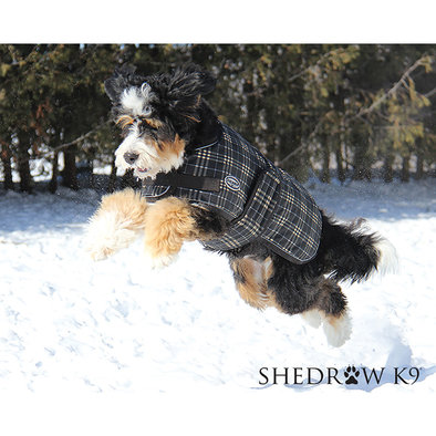 Shedrow K9, Glacier Dog Coat Brown Plaid