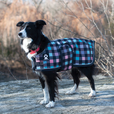 K9 Harbour Rain Coat - Pastel Gingham