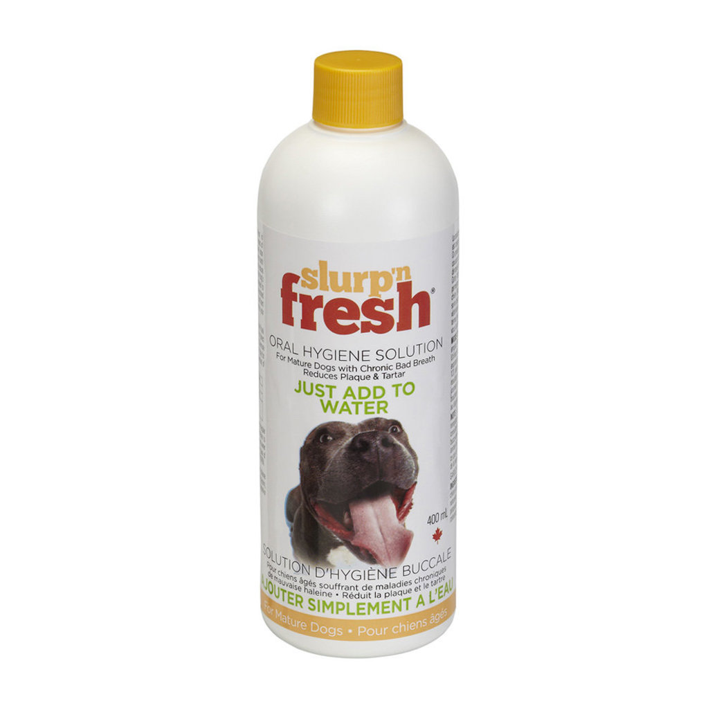 View larger image of Slurp 'n' Fresh, Dog - 400 Ml