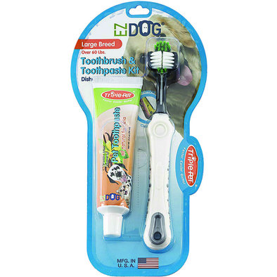 Toothbrush & Toothpaste Kit - Vanilla Mint - Large