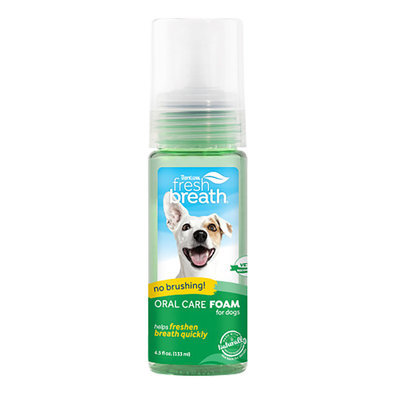 Dental Fresh Mint Foam - 4.5 oz