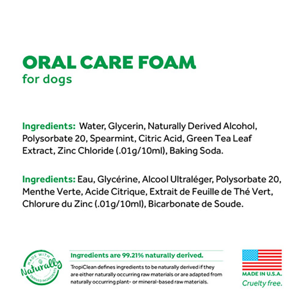 View larger image of Dental Fresh Mint Foam - 4.5 oz