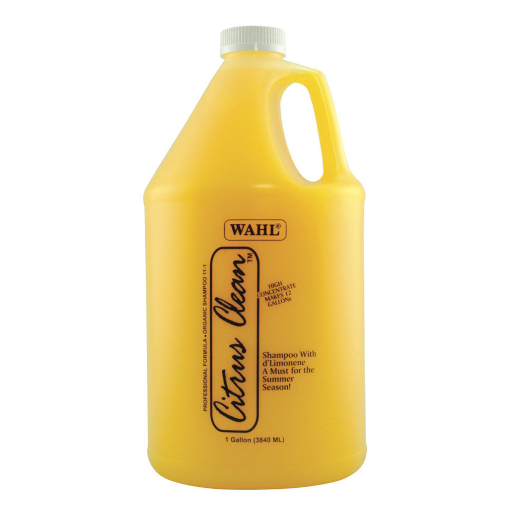 View larger image of Citrus Clean Shampoo