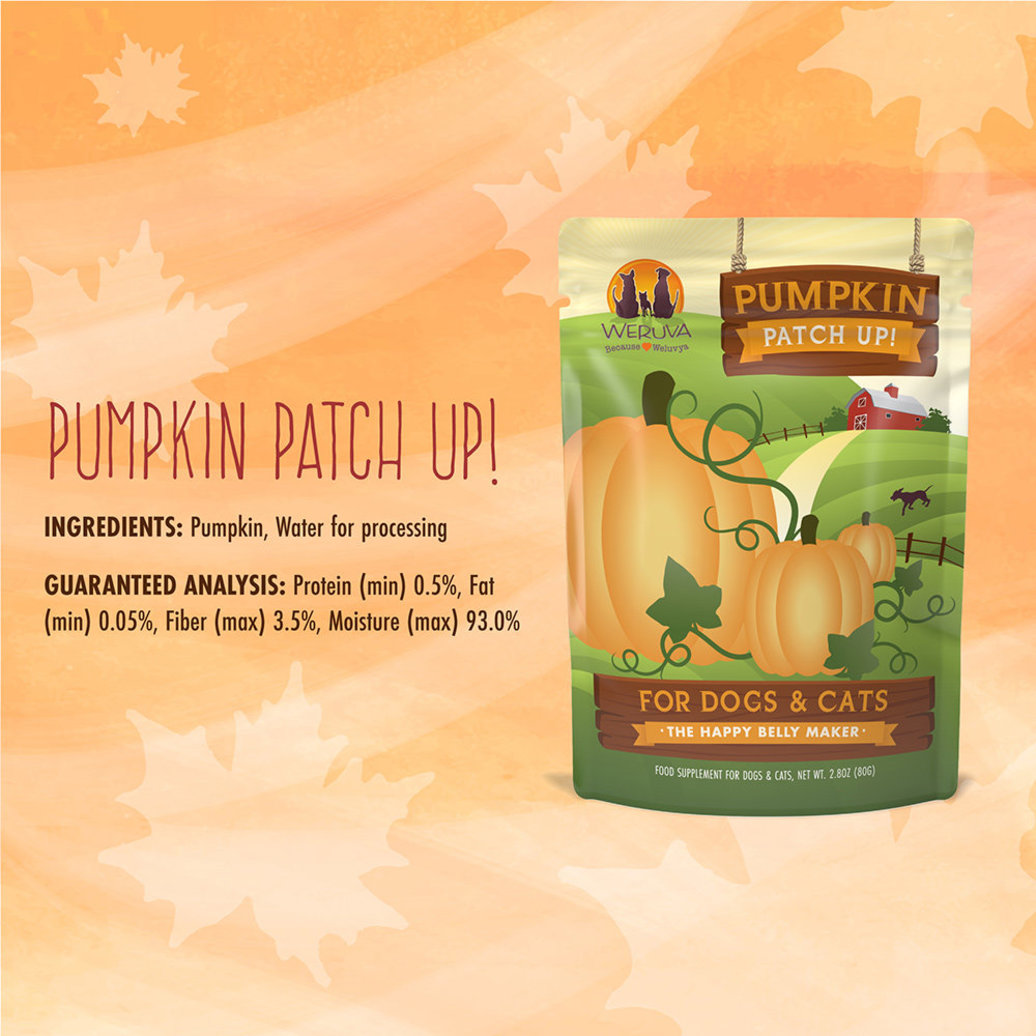 View larger image of Pouch, Adult - Pumpkin Patch Up